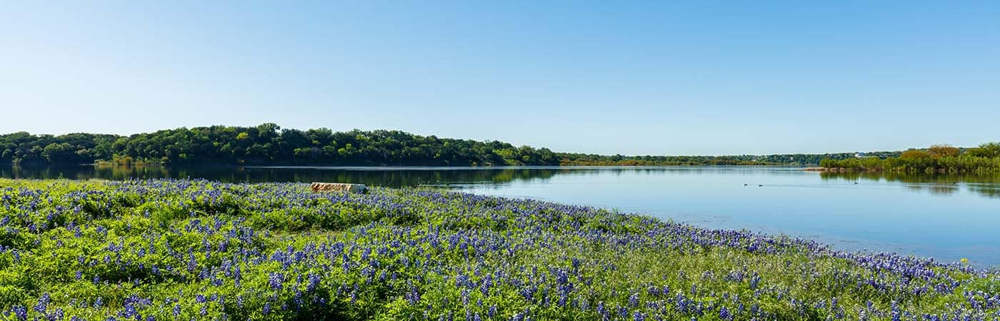 Lake in Nature