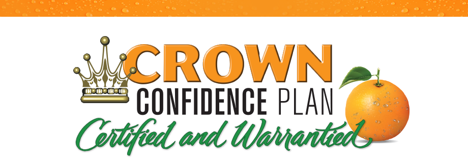crown confidence banner
