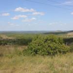 Scenic Drives TX
