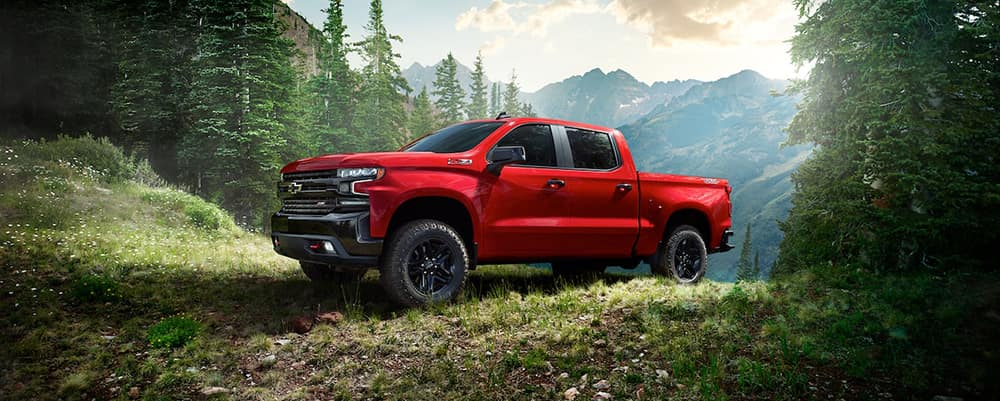 2020 Chevy Silverado in forest CANADA