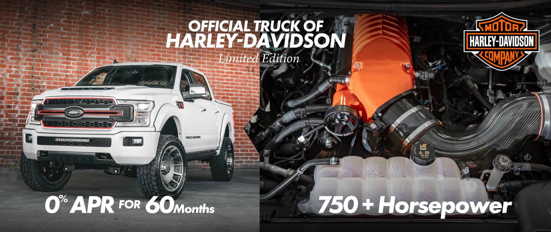 20_Harley-Banner