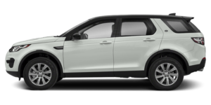 white discovery sport