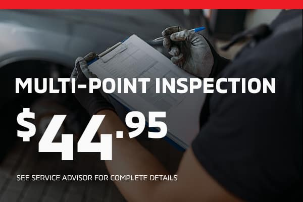 Multi-point inspection $44.95