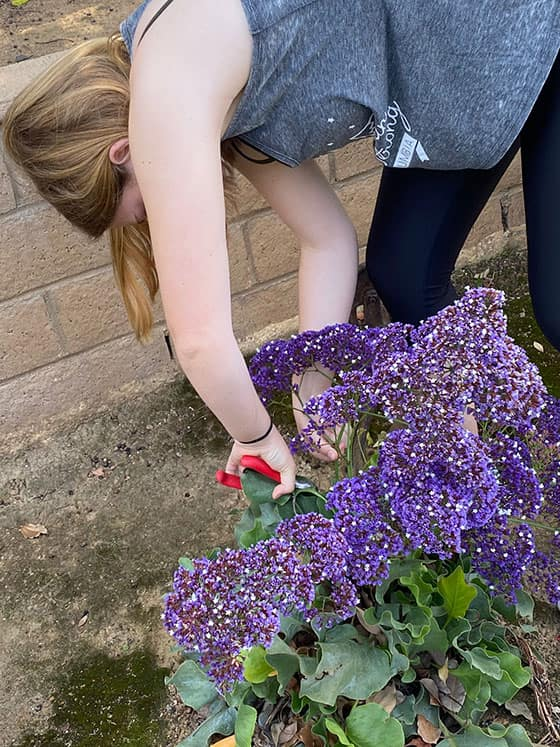 Finding Flowers for May Day Baskets