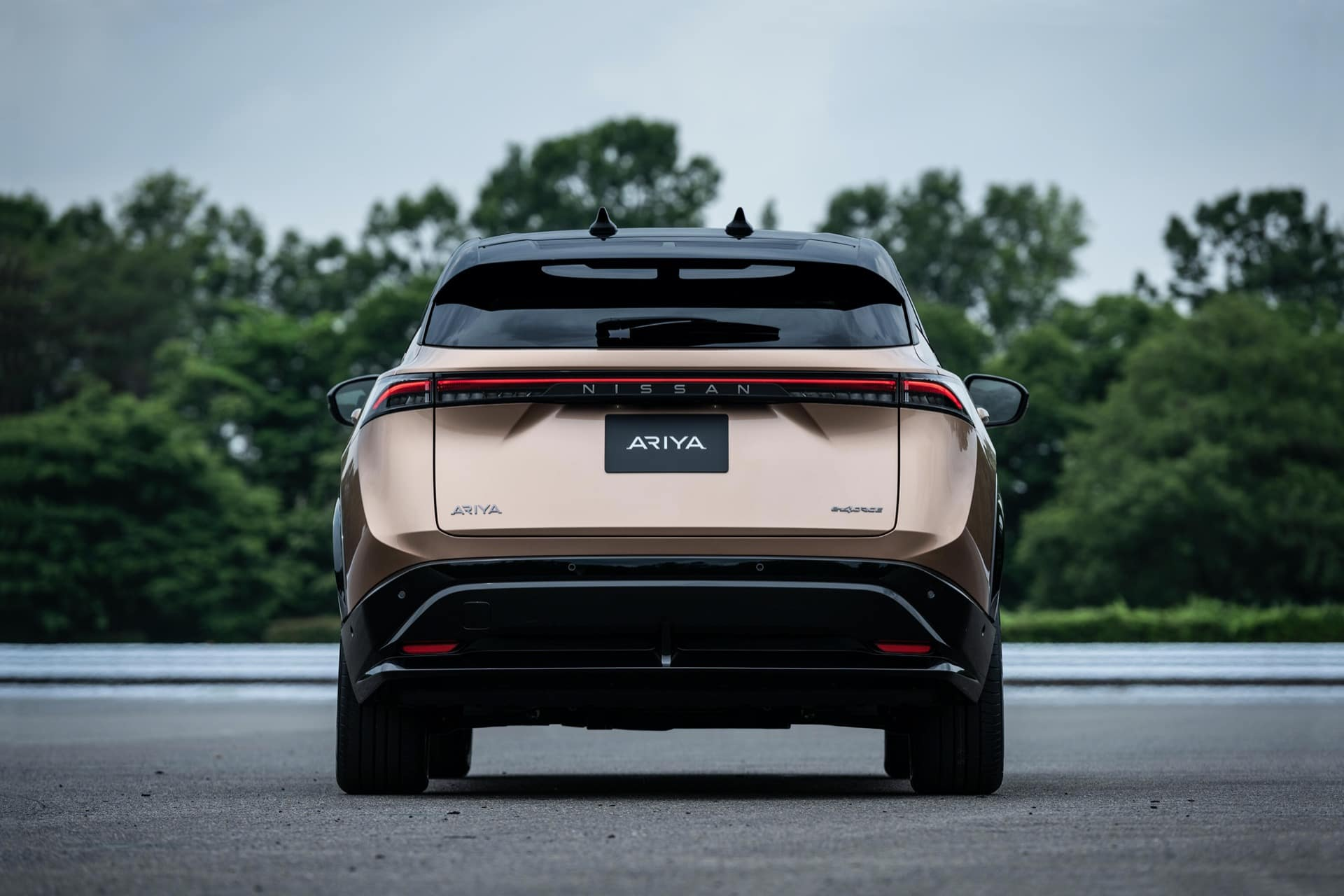 2022 Nissan Ariya Rear