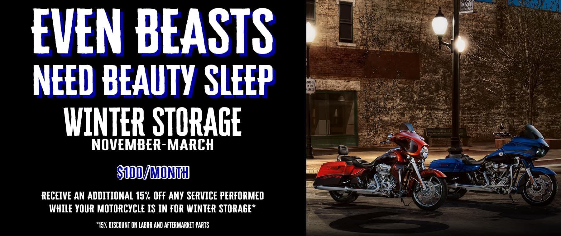 winter storage website
