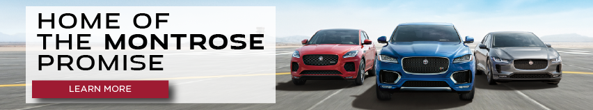 2020 Jaguar Pace family on road with blue sky. Home of the Montrose Promice. Click to learn more.